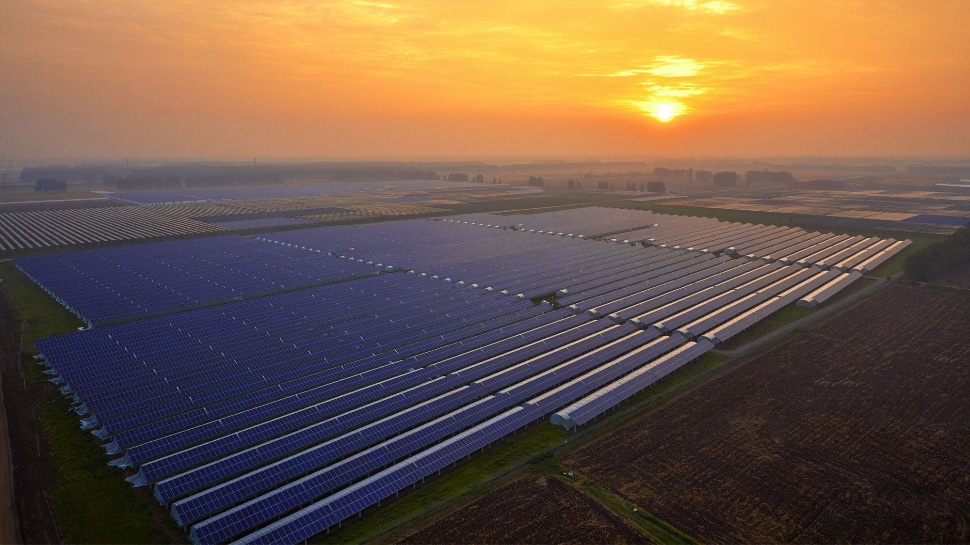 Solar Farm with sunset